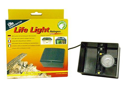 Lucky Reptile LL-1 Life Light met LED, passende LED-lamp voor Insect Tarrium, Life Boxen en Life Piramide, halogeen, hoekig.
