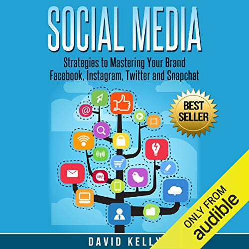 Social Media: Strategies to Mastering Your Brand cover art