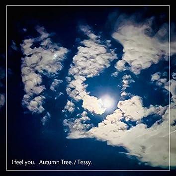 I feel you. Autumn Tree.