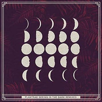 Seeing in the Dark Remixes