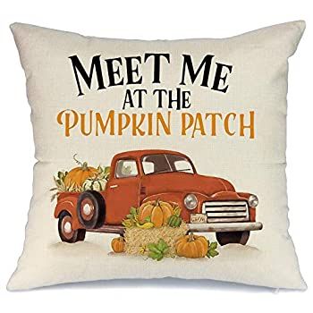 AENEY Fall Decor Truck Throw Pillow Cover and Meet Me at The Pumpkin Patch 18 x 18 for Couch Vintage Fall Decorations Farmhouse Home Thanksgiving Decorative Pillowcase Faux Linen Cushion Case for Sofa