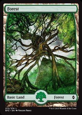 English Battle for Zendikar 270 - Foil Forest Magic mtg Light Play Full Art