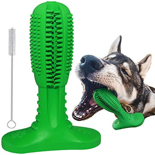 RUCACIO Hundespielzeug, Zahnbürste für Hunde, Welpen, Zahnpflege, Bürsten, Kauspielzeug, effektive Zahnreinigung, Massagegerät, ungiftig, Naturkautschuk, bissfest