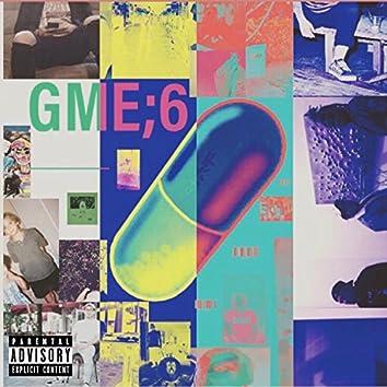 GME 6