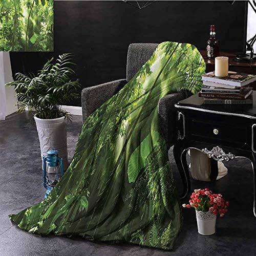 GGACEN bont gooien deken zomer zonnestralen komen in tropische maan jungle met bamboe soorten planten met super zacht licht gewicht Cozy warm pluche hypoallergeen