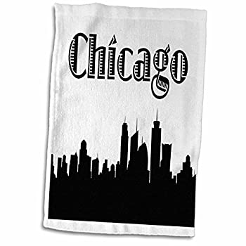 3D Rose Chicago City Skyline Towel 15  x 22