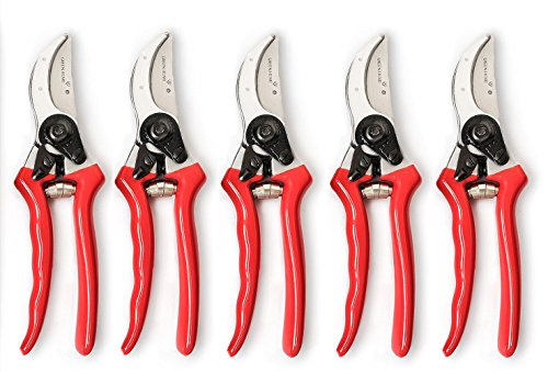 Hand Pruners for Indoor Gardening - Easy to Use, Rust Resistant Snips for Year Round Pruning & Maintenance - Ergonomic Design Provides Comfortable Grip & Accurate Cutting - 5 Pack