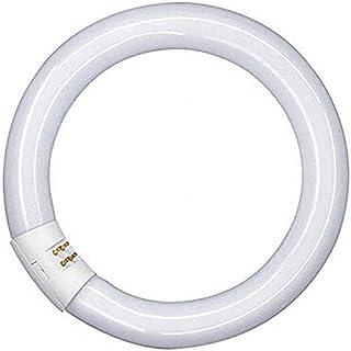 Osram Tube Fluorescent Verre 32 W 2GX13 Blanc