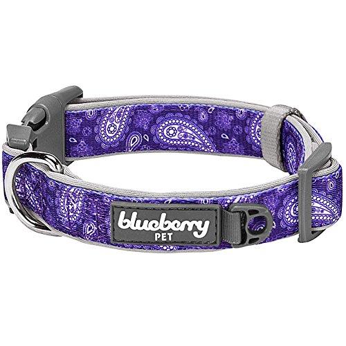 Blueberry Pet 1,5cm S Paisley-Druck Inspiriertes Ultimatives Violette Neopren-Gepolsterte Hundehalsband, Kleine Halsbӓnder für Hunde