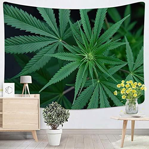 Weed Cannabis Sativad Marijuana Hemp Leaves Growing Artistic – 50″x60″