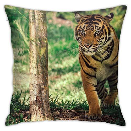 Tiger in Motion San Diego Kissenbezug, dekorativer Kissenbezug für Zuhause, Sofa, Bett, Auto, 45,7 x 45,7 cm