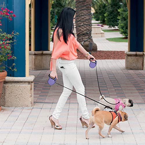 Ruff 'n Ruffus Retractable Dog Leash