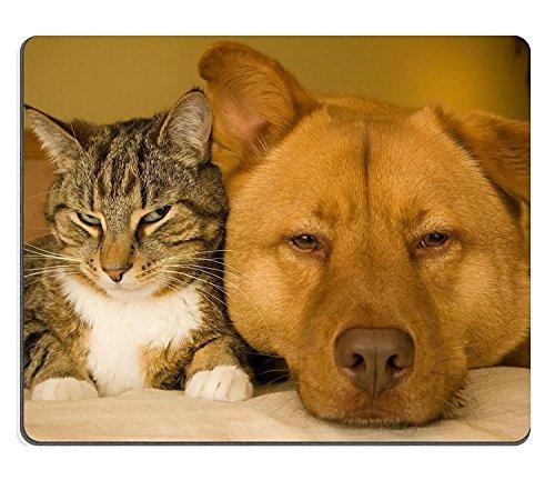 luxlady Gaming Mousepad gato y perro descansando juntos en cama imagen ID 3090271