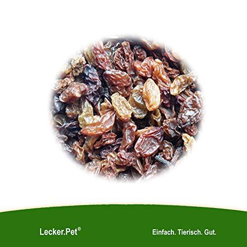 Lecker.Pet® 10 kg Rosinen 10000 g Futterrosinen Futter für Vögel Meisen Wildvögel TOPQUALIT