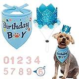 Set di bandana e cappello per cani Scenereal, bandana di compleanno e cappello per feste di compleanno, triangolo sciarpa per cani di piccola e media taglia