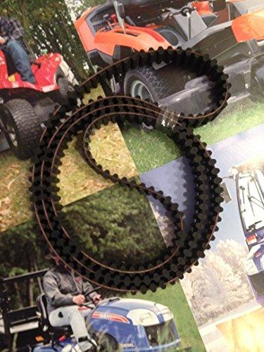 Nr. 179 Doppelzahnriemen 1600-DS8M-20,Sabre, Iseki, Castel Garden,Sabo