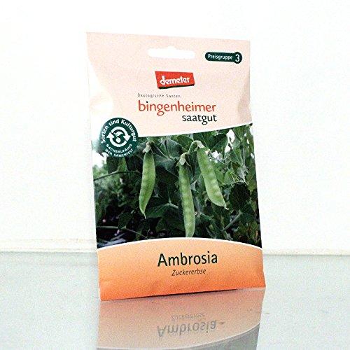 Bingenheimer Saatgut - Zuckererbse Zuckerschote Ambrosia - Gemüse Saatgut / Samen
