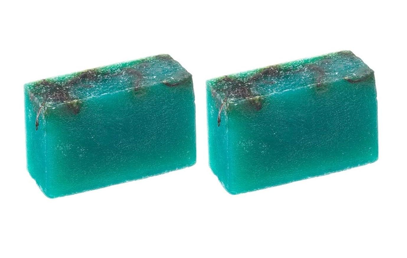 囲む組み込む汚れるLUSH ラッシュ シーベジタブル(100g)×2個セット フレッシュなライムの後にラベンダーの優しい香りソープ