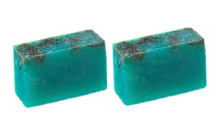 服カートペリスコープLUSH ラッシュ シーベジタブル(100g)×2個セット フレッシュなライムの後にラベンダーの優しい香りソープ
