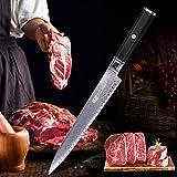 Cuchillos de cocina profesional de 10 pulgadas Yanagiba Cuchillo de madera del ébano octogonal manija patrón en escalera 67 Las capas de acero de Damasco del cuchillo de cocina
