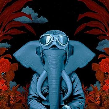 Elefantes Suicidas