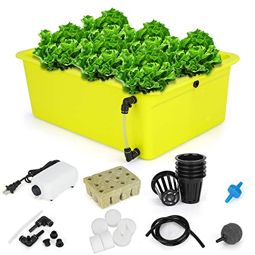 GROWNEER 6 Sites Hydroponics Grower Kit Household DWC Hydroponic System Growing Kits with Air Pump and Hydroponics Tools for Vegetables, Flowers