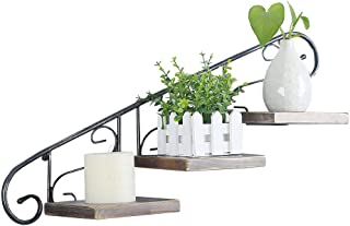Industrial Flower Pot Holder Wall Mounted,Flower Potted Plant Stand Hanging Plants Bracket,Wall Display Shelves Metal Floating Wood Shelves,Rustic Iron Plant Hanger Shelf for Indoor/Outdoor Home