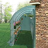 LLDHUAJIA LIANGLIANG Invernadero de jardín Caseta contra la Pared Planta de jardinería Casa de Flores Cobertizo a Prueba de Lluvia Tapa de preservación del Calor PE, 2 Colores