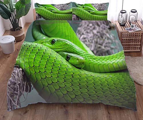 Bettwäsche Set Grüne Schlange Bettbezug Und Kissenbezug Mikrofaser 3D Digital Print Dreiteiliger 135×210Cm