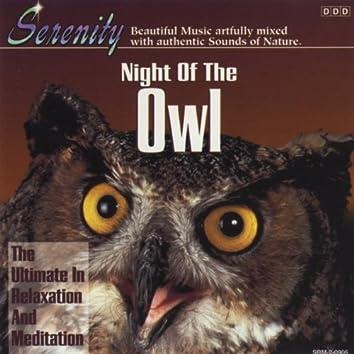 Night of the Owl - Single