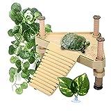 Plataforma Flotante para Tomar el Sol de Tortugas Holzsammlung, Muelles, Rampas, Areas para Tomar el Sol para Reptiles Turle, Plataforma para Acuarios con Peceras, Terraza para Descansar Tortugas.B-S