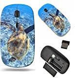 MSD Wireless Mouse Travel 2.4G Wireless Mice with USB Receiver, Noiseless and Silent Click with 1000 DPI for Notebook, pc, Laptop, Computer, mac Book Design 34981326 a Hawaiian sea Turtle