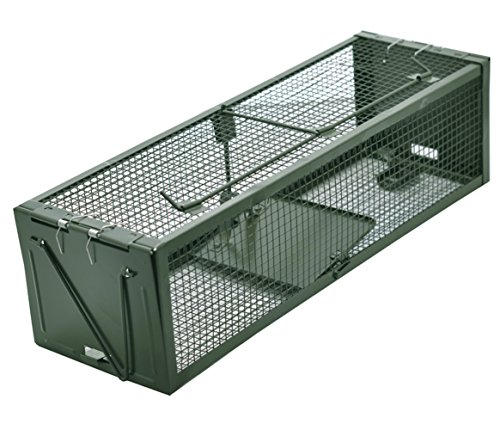 Live Animal Humane Trap 2-Door Mouse Trap Cage for Chipmunk, Rats, Squirrels, Voles, Rodent and Small Size Pests