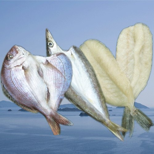 クール便 国安青果 鮮度抜群CAS冷凍品天然魚 宇和海朝獲れ鮮魚の一夜干しお試し3枚セット「カマス・真鯛・フグ」