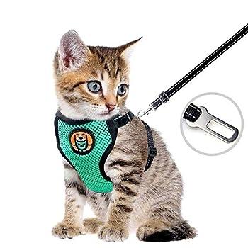 Harnais pour chat - Harnais anti-effraction - Pour chiot et chiot - Avec étui en maille souple réglable - Idéal pour les chiots - Vert menthe