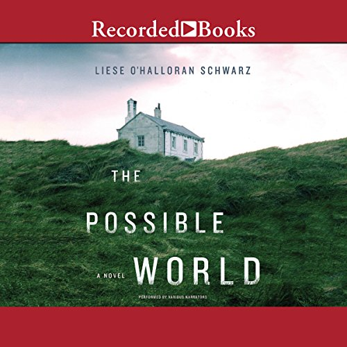 The Possible World Titelbild