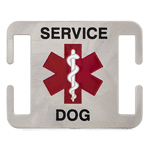 Leash Boss Service Dog ID Tag - Fits Directly on Dog Collar or Harness - Quiet and Silent Stainless Steel K9 Service ID Tag (5/8 in)