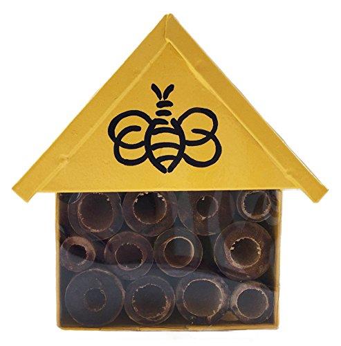 Nutley's Jaune Miniature Insectes Maison avec décoration Abeille