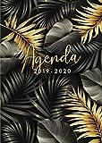 Agenda 2019 2020: Agenda 2019/20 Semana Vista, Organiza tu día - Agenda semanal 18 meses - Julio 2019 a Diciembre 2020 - Hojas de palma tropical - Dorada y negra