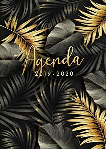 Agenda 2019-2020: Agenda giornaliera 2019 2020, luglio 2019 - dicembre 2020, 18 mesi, formato 15x21, foglie di palma, colore nero