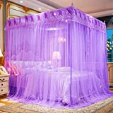 Tingxiu Cute Princess Mosquito Net for Bed Rose Lace for Girls Teen Girls Toddler Girls Bed Canopy for Full/Queen/King Size Bed Decoration (Purple, Queen)