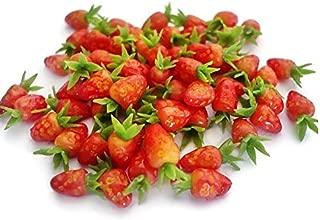 The Best Buy 20 pcs Dollhouse Miniature Realistic Fresh Strawberry Fruit