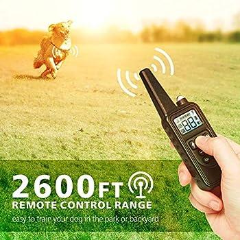 Collier de Dressage pour Chien, Collier Anti Aboiement avec Télécommande de 800 Mètres Récepteur Étanche IPX7 Rechargeable avec 4 Modes Vibration/Choc/Beep Sonore/lumière pour 3 Chiens (Blanc)