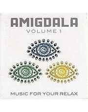 3 CD Musica Rilassante Amigdala con portaincenso in legno, Meditazione, Yoga