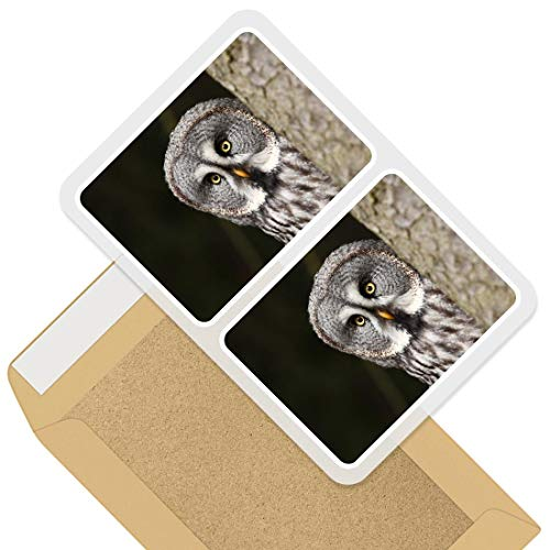Rectangle Stickers (Set of 2) 10cm - Owl in Trees Forest Bird Decals for Laptops,Tablets,Luggage,Scrap Booking,Fridges, 44253