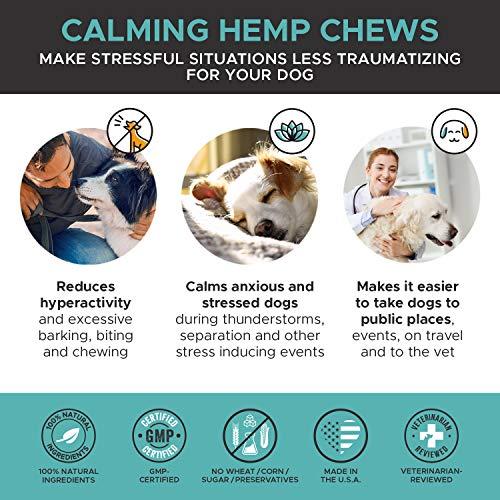 PREMIUM CARE Hemp Calming Treats