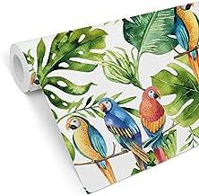 Fototapete Exotisch Pflanzen Blumen Vögel Vogel Dschungel Regenwald Vliestapete
