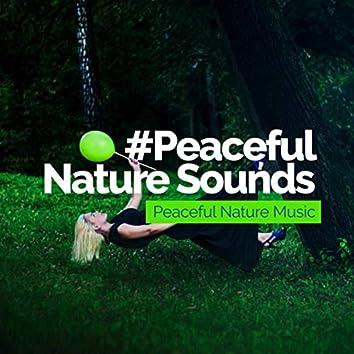 # Peaceful Nature Sounds
