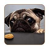 Divertidos posavasos de piel sintética con diseño de galleta para perros, 6 unidades, cuadrados para bebidas, para uso en casa o bar, regalo de inauguración de la casa