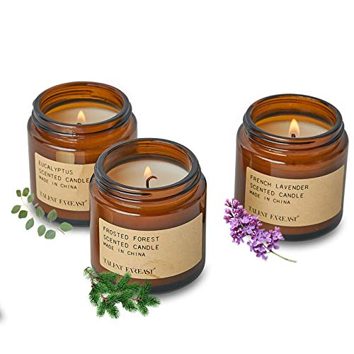 Scented Candles Gift Set, 3pack 3oz Aromatherapy Candles Scented with Long Lasting Burning, Highly Home Scented Candles Gifts for Women (French Lavender, Eucalyptus, Frosted Forest)